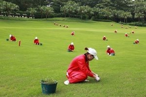 China golf course golfguru pl