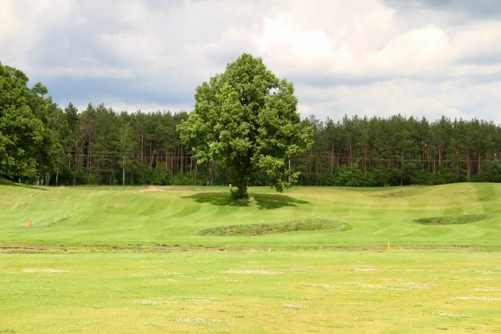 WolfClub Litwa golfguru 13