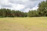 WolfClub Litwa golfguru 4