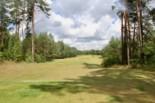 WolfClub Litwa golfguru 8