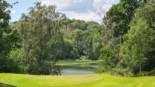 Orli Las Golfguru 1
