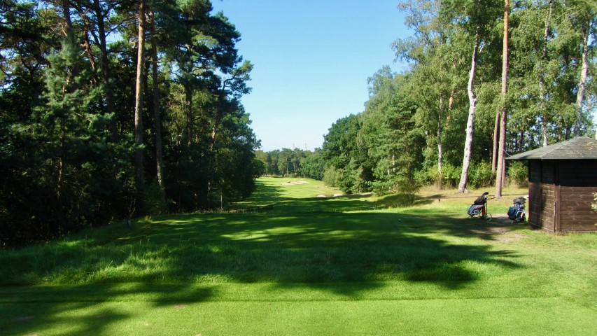 Falkenstein Golfguru 19