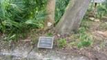 Osprey Point Golfguru 12