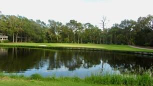Turtle Point Golfguru 20